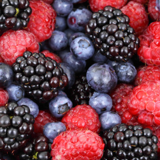 COMESTIBLES / les fruitiers